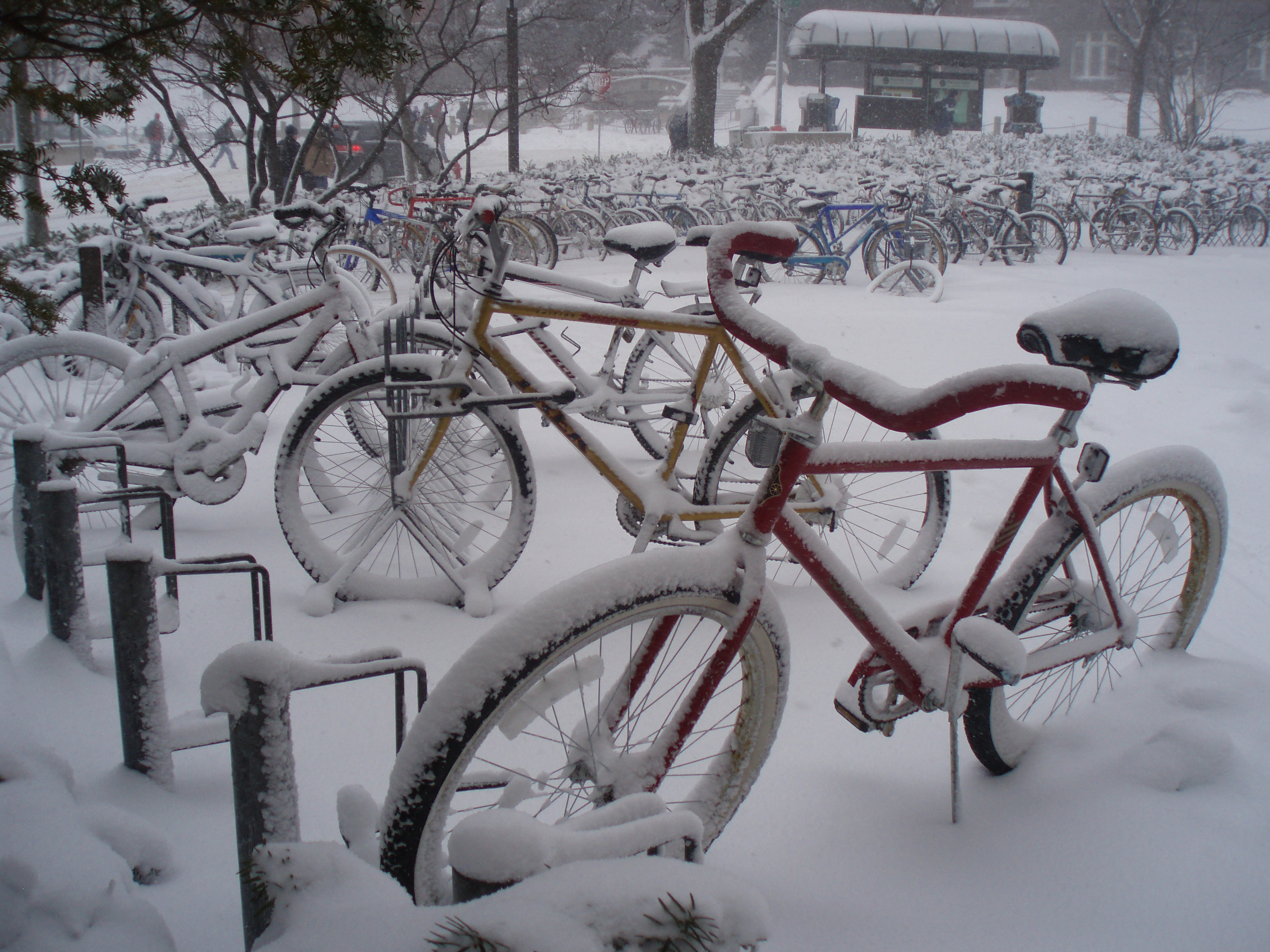 Throwback Thursday: Snow-covered bicycles outside Wisconsin Union Theater